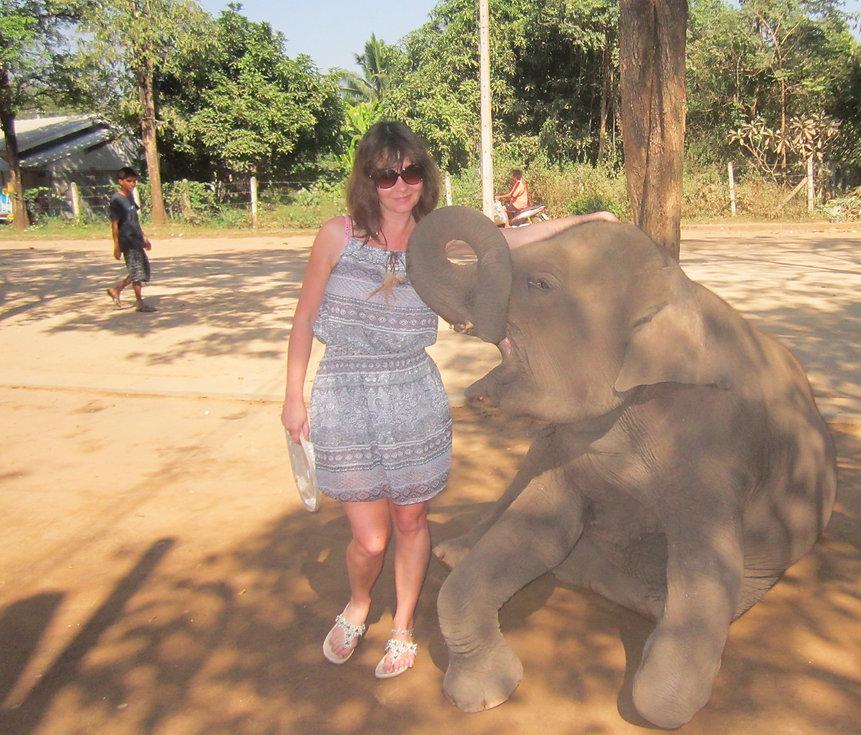 Дружба с маленьким слоником