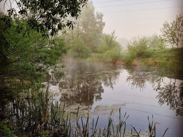 Утреннее озеро возле базы Экополис