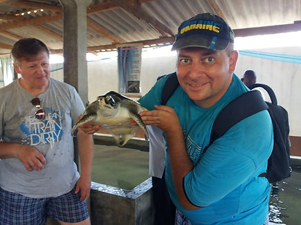 Мое фото с черепахой