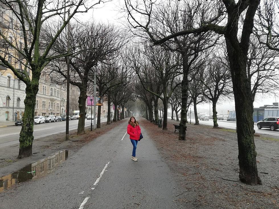 Аллея на бульваре Страндвеген