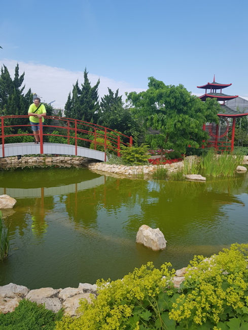 Мост в японском саду парка Камелия