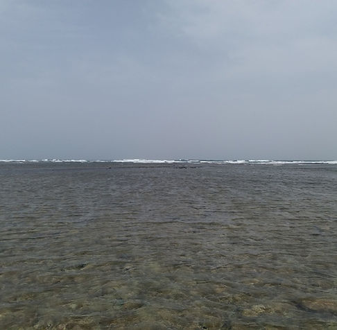 Акулы будут там, где видны волны