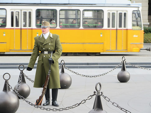 Почетный караул в Будапеште