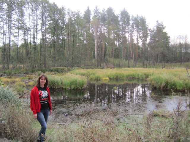 И снова болота