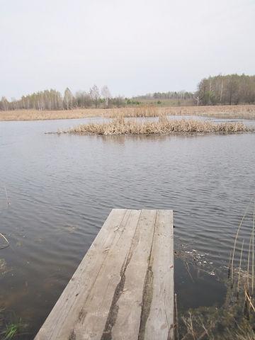 Озеро возле усадьбы Полесье