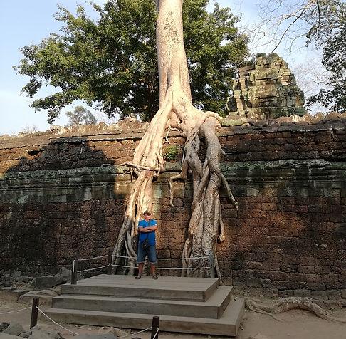 Корни деревьев на заборе Храма Та Пром
