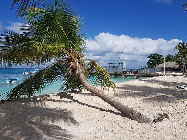 Пальма и корабль на пляже Катуано