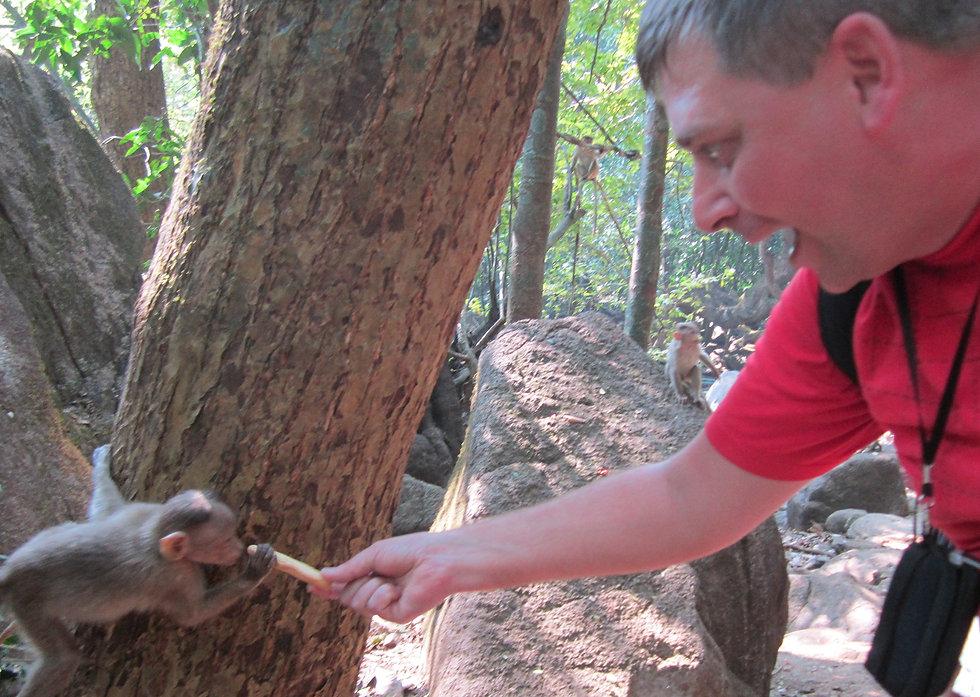 Пора покормить малыша-обезьянку