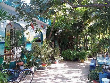 Двор хостела в Тулуме
