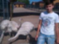 Зоопарк в Межигорье