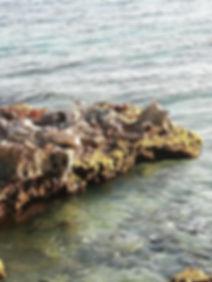 Острые камни на берегу