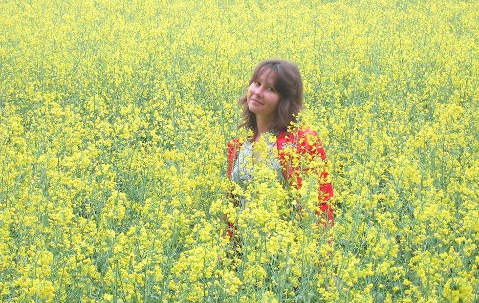 Цветущие поля Украины