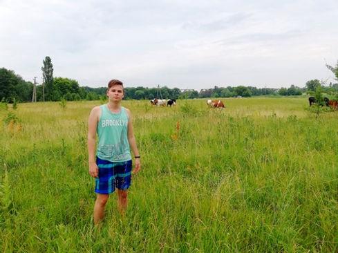 Фото на фоне коров