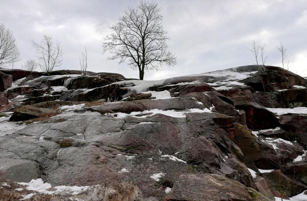 Камень в котором выбита Темппелеаукио