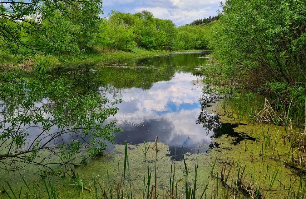 Озеро возле базы Экополис