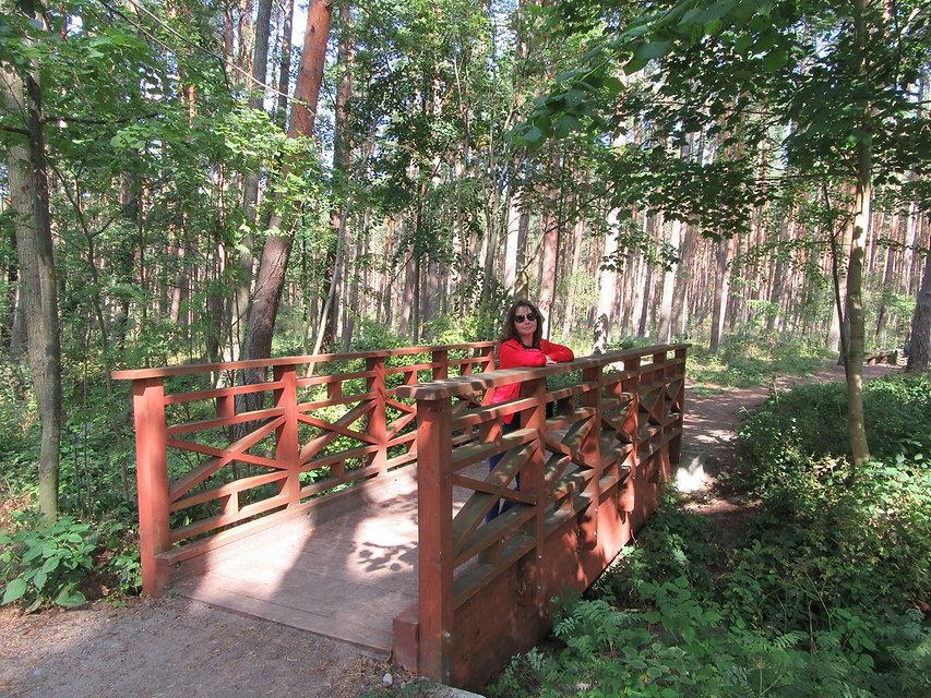 Мост через ручей в Паланге