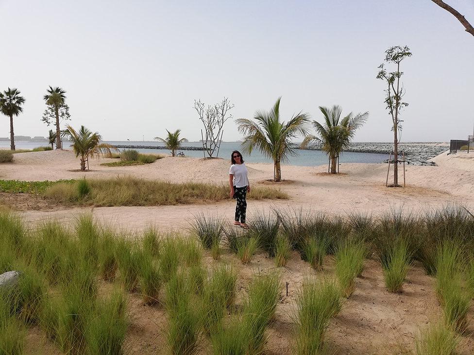 Барханы на пляже Ла Мер, Дубаи