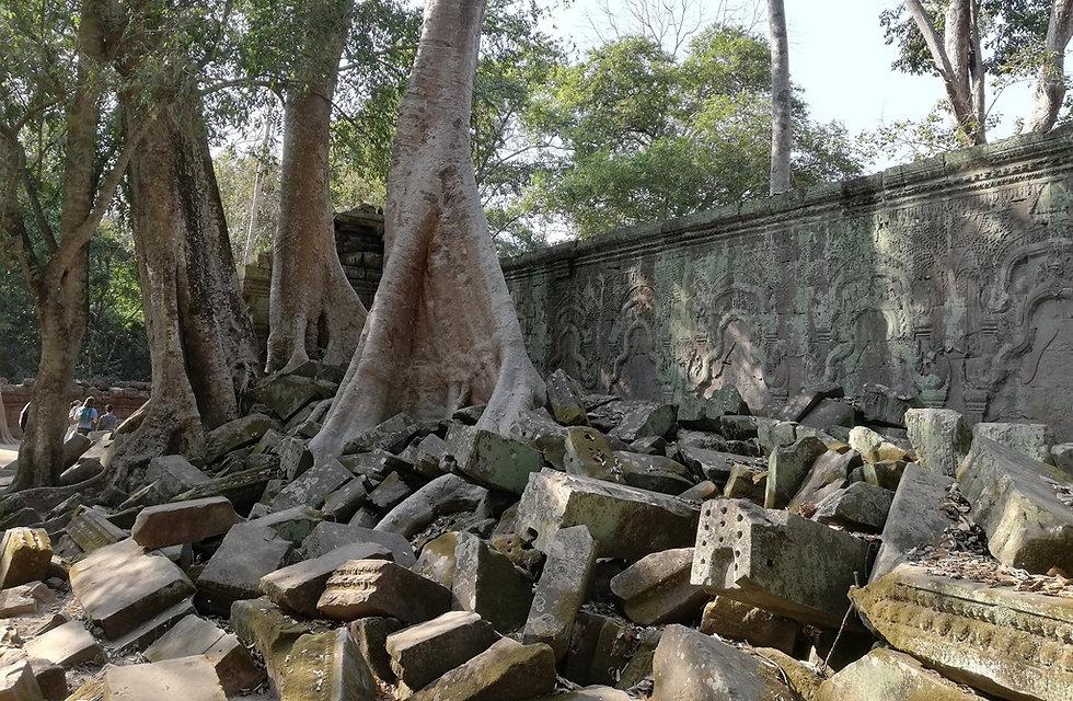 Деревья разрушили храм