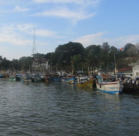 Рыбацкие лодки в Тангалле