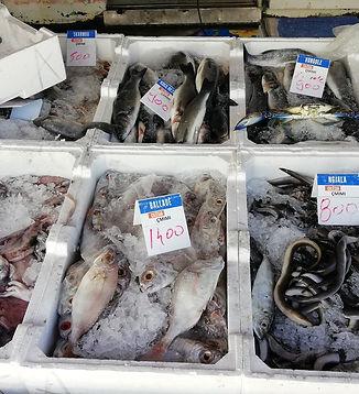 Албания, рыбный рынок