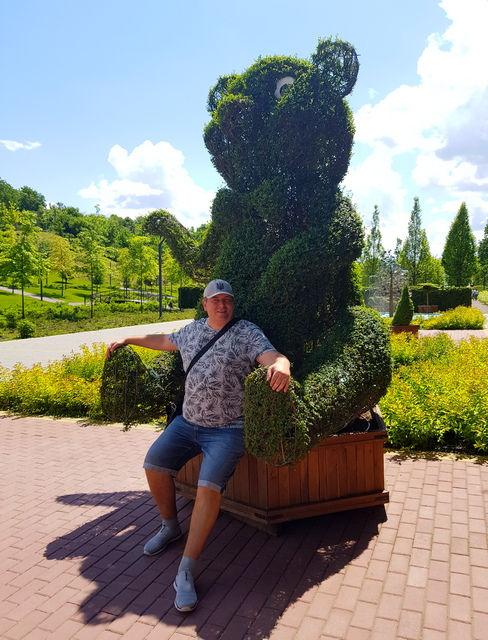Кустарниковый медведь