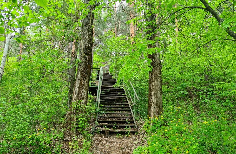 Лестница ведущая к базе Экополис