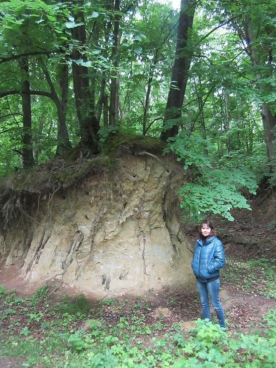 Темные леса полтавской области