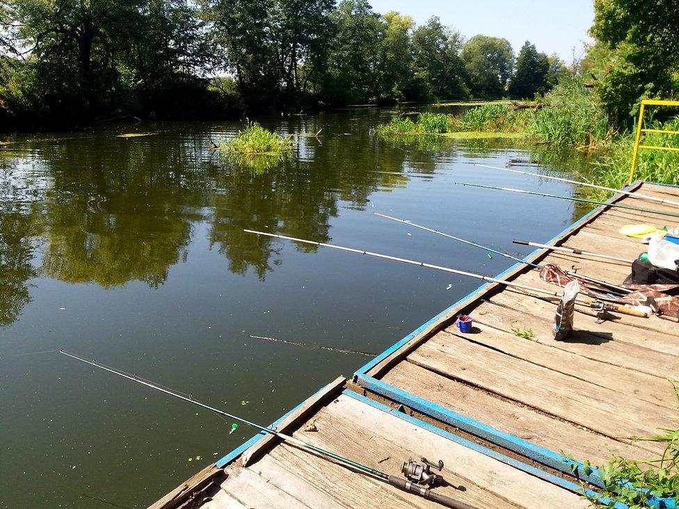 Рыбалка возле Лесной сказки