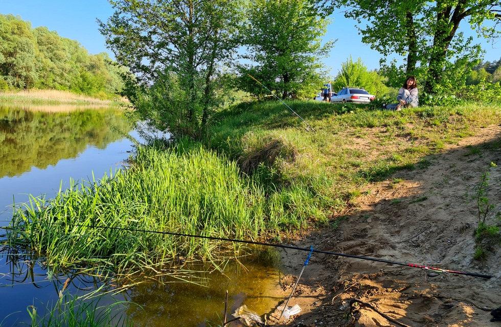 Удочки дальнего заброса на реке Тетерев