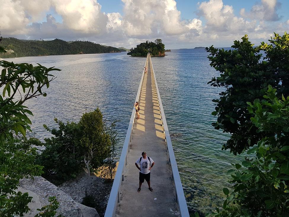 Мост вникуда