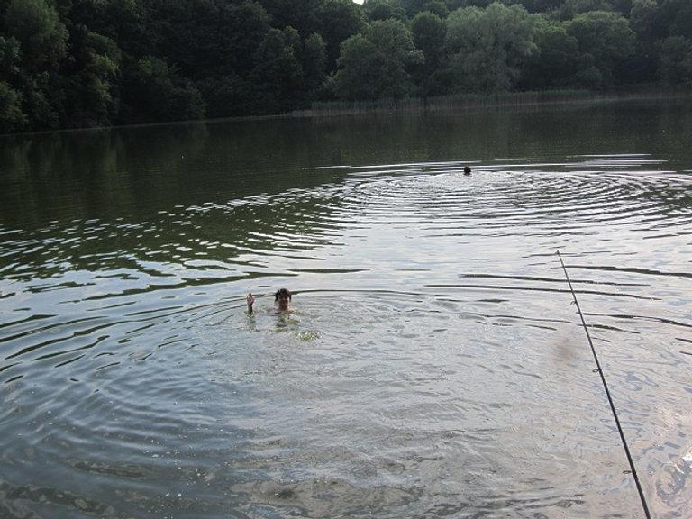 Первое летнее купание