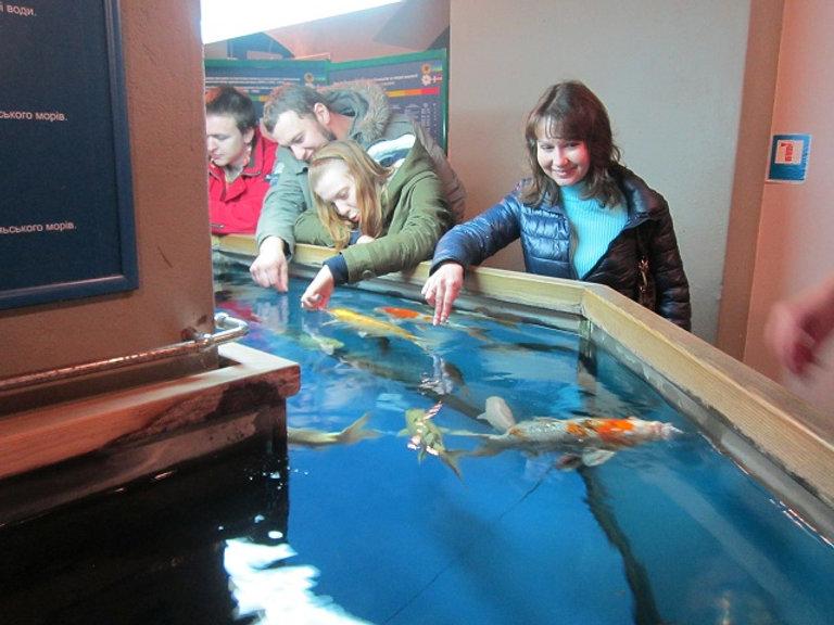 Золотые рыбки в Музее воды