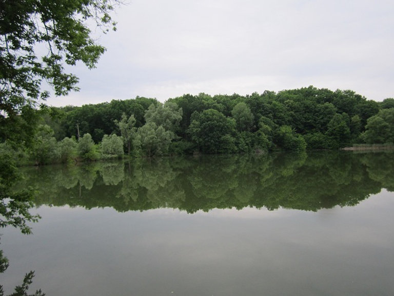 Утреннее спокойствие на озере