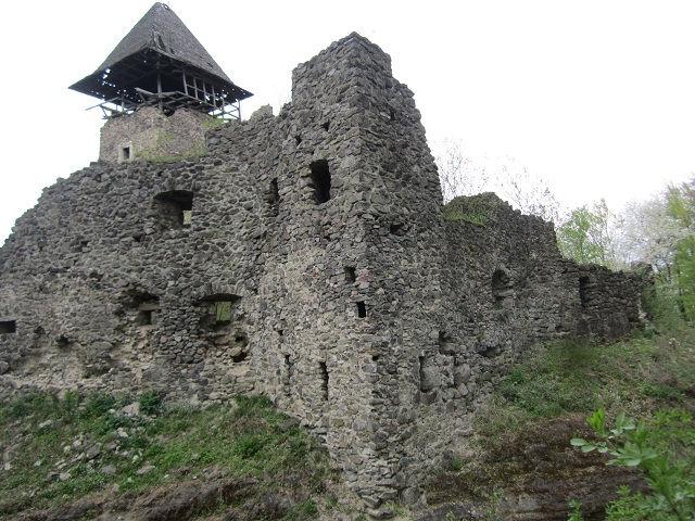 Невицкий замок, Украина