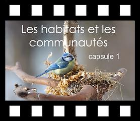 Les habitats et les communautés capsule
