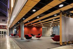 South Surrey Interior Designer