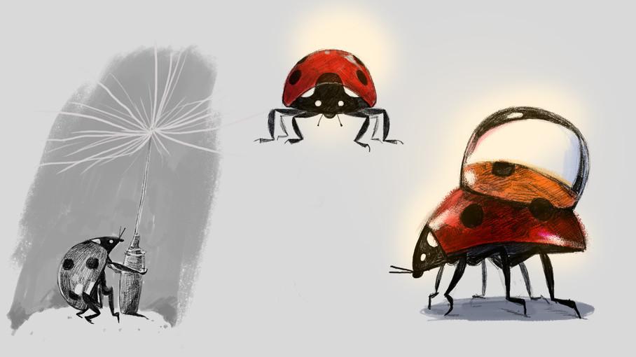 ladybug-color_1.jpg