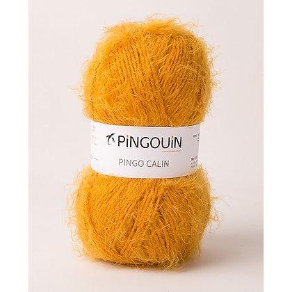 Pingo câlin - Miel