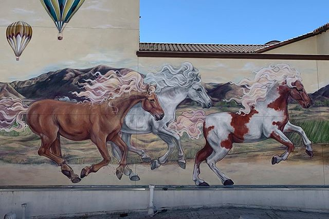 Chasing the wind, a mural for Old Town T