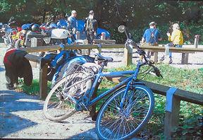 push bike hut.jpg