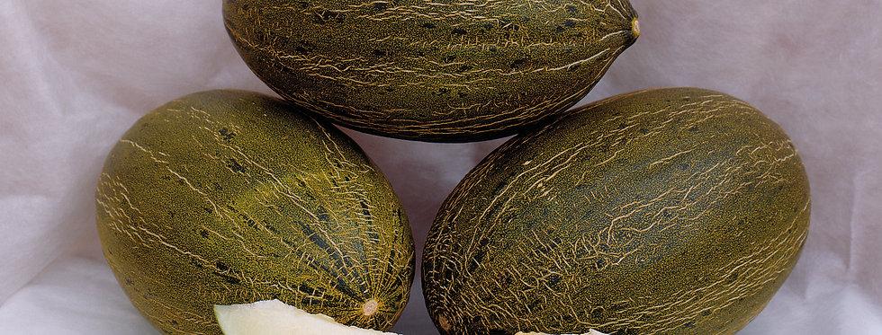 Melon don quixote