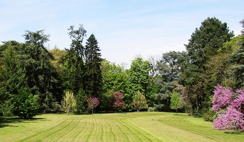 Grand-Bouchet-parc-paysager.jpg