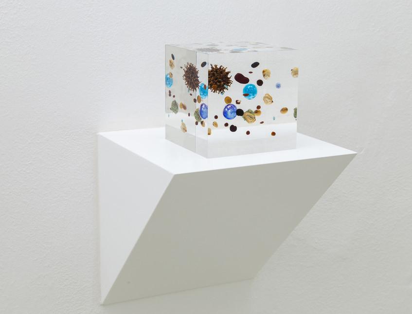 Satoshi-Hirose-Beans-Cosmos-2014-resina-acrilica-legumi-oro-mappa-marmo-plastica-frutto-di
