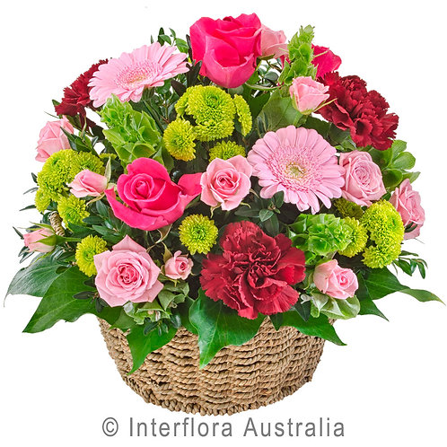 Floral DeVine Hunters Hill Pink Green Flower Basket Daily Delivery Gladesville Woolwich Lane Cove Putney Drummoyne Ryde