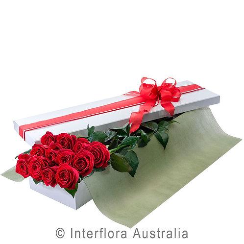 Hunters Hill Florist Seduction Red Pink White Rose Box Arrangement Dozen 12 24 Gladesville Woolwich Putney Drummoyne Ryde
