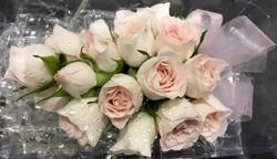 Pale Pink Rose Corsage