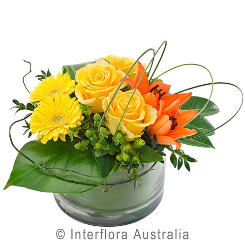 Floral DeVine Hunters HillOrange Yellow rose Flower Vase Daily Delivery Gladesville Woolwich Lane Cove Putney Drummoyne Ryde