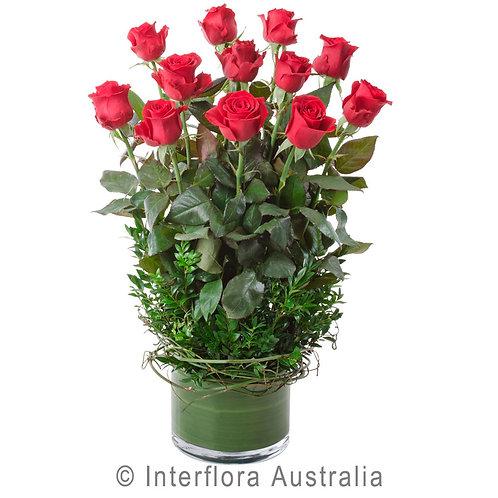 Hunters Hill Florist Desire Red Pink White Rose Vase Arrangement Dozen 12 24 Gladesville Woolwich Putney Drummoyne Ryde