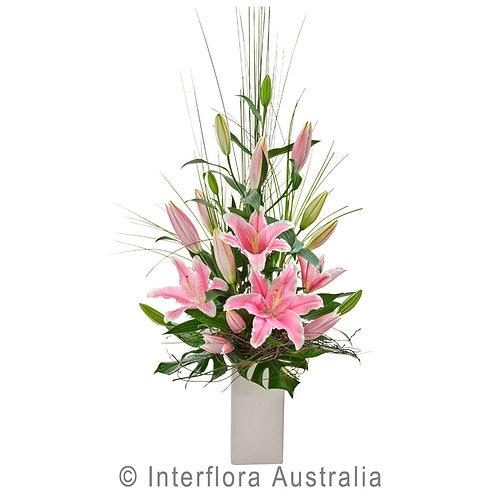 Floral DeVine Hunters Hill Pink Flower Arrangement Vase Daily Delivery Gladesville Woolwich Lane Cove Putney Drummoyne Ryde
