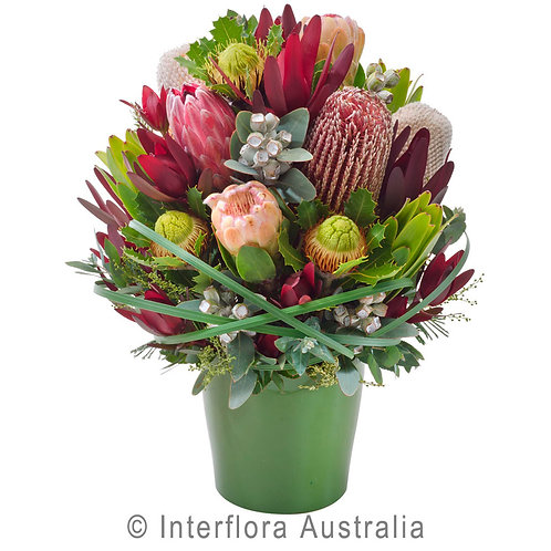 Floral DeVine Hunters Hill Native Flower Ceramic Pot Daily Delivery Gladesville Woolwich Lane Cove Putney Drummoyne Ryde